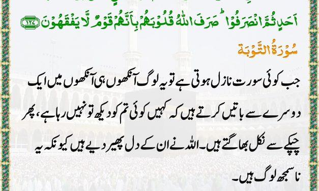 Daily Quran – 14 June 2019