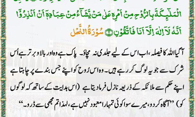 Daily Quran – 20 May 2020