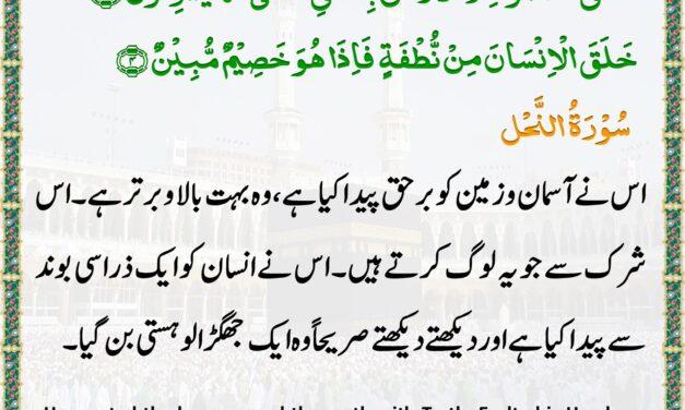 Daily Quran – 21 May 2020