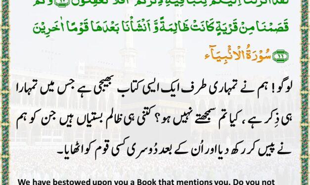 Daily Quran – Ramadan 19