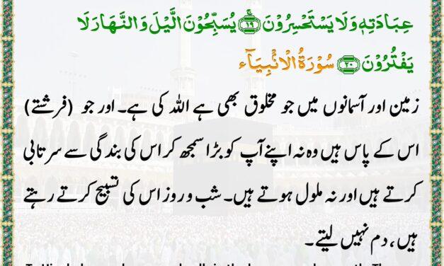 Daily Quran – Ramadan 23