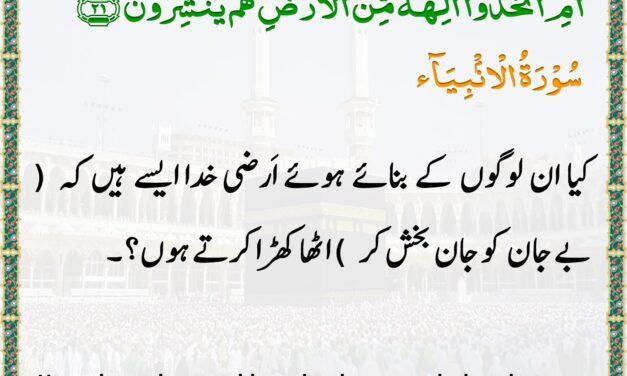 Daily Quran – Ramadan 24