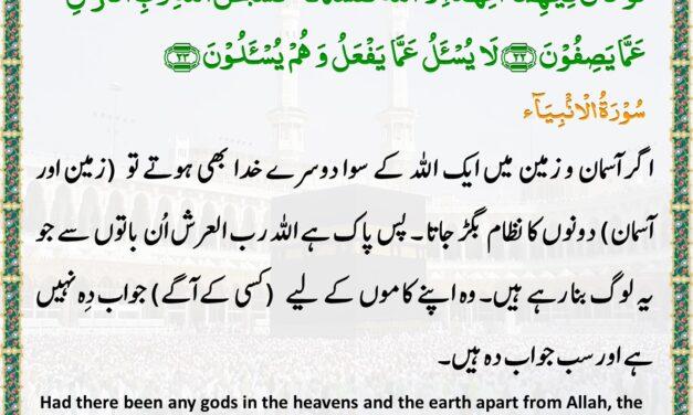 Daily Quran – Ramadan 25